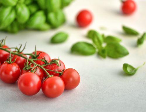 Paradajky a papriky počas horúcich dní